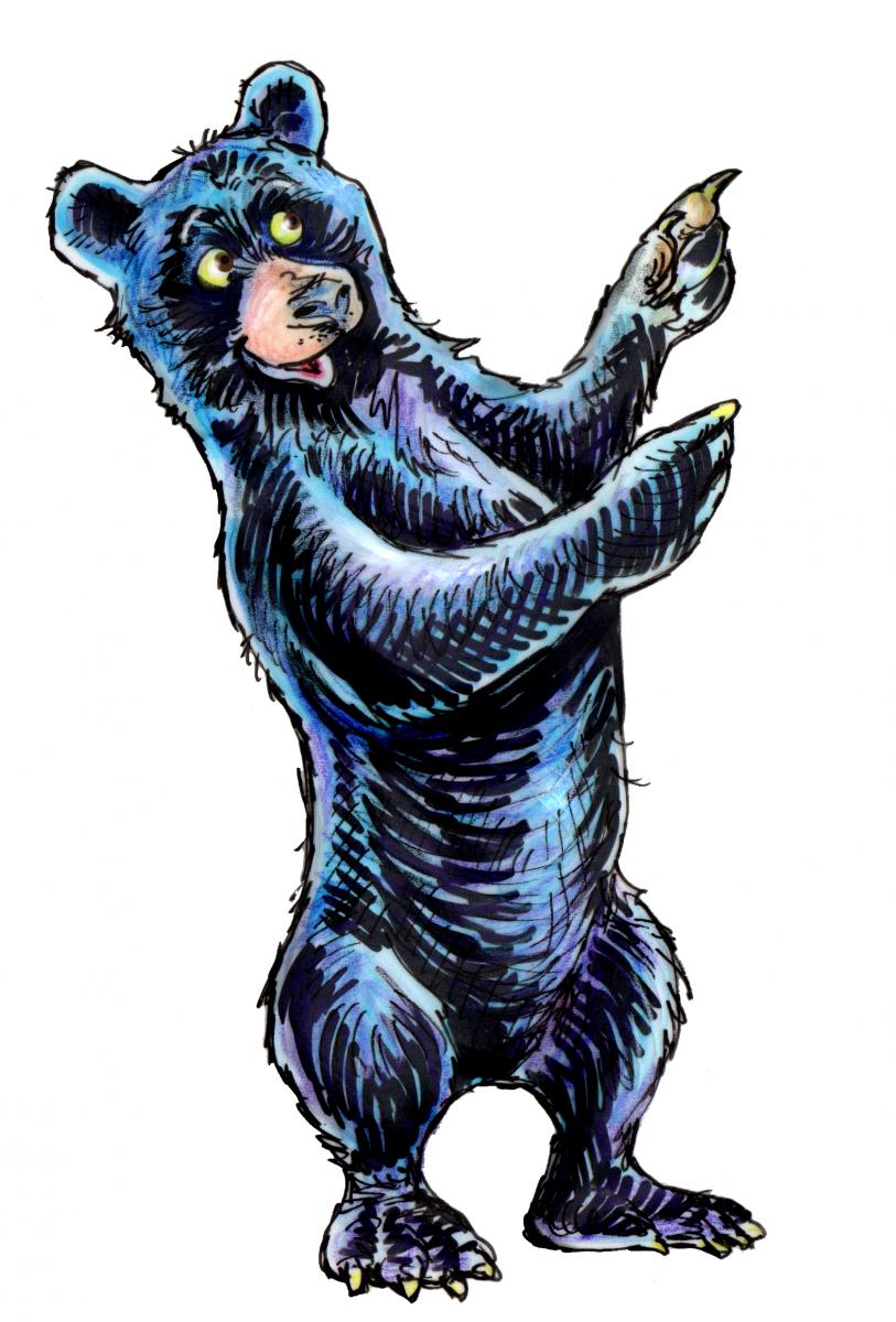 bear GALL