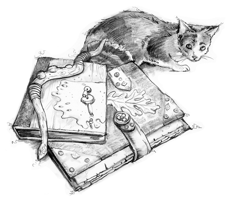 sagewoman spot web cat books copy